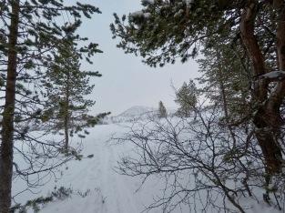Skitur kulisser.